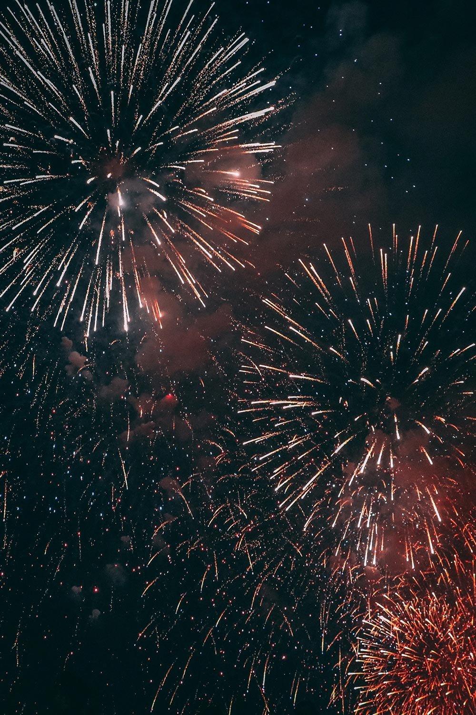 エキサイティング花火2019第44回江戸川区花火大会特別プランのご案内の画像